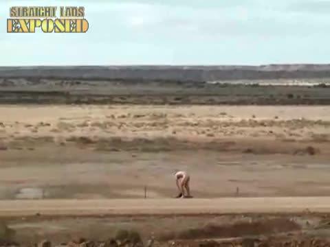 Streaker Heading Bush