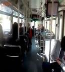 takin a piss bus