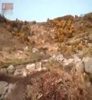 rock pools newcastle