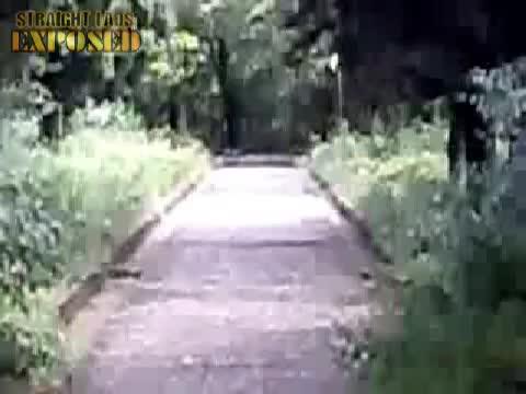 Naked woods
