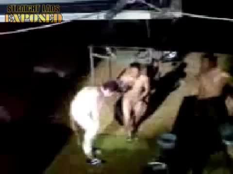 flasheros desnudos bailando