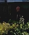 garden flasher