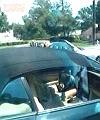 jerk off in car