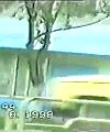 naked chase