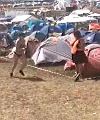 roskilde festival 1