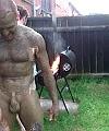 mud cock
