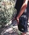 pissing hiker