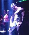Hard Muscle Stripper (HQ)