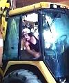 Workman Vine