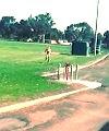 Streaking The Field