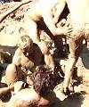 Naked Festival Mud Fight