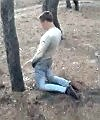 Pissing In A Forest