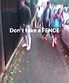 Pissing On A Fence