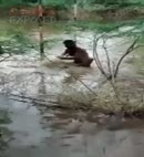 Indian Man Washing In A River