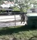 Black Lad Runs Around Naked