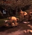 Naked Rugby Initiation