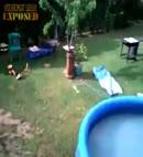 ryan jumping in pool naked