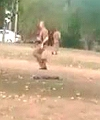 Naked Man Arrested