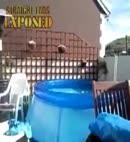 Nude Paddling Pool Diving Team