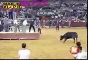 bullfighter loses pants
